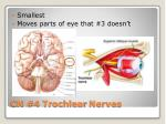 cn 4 trochlear nerves