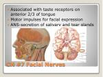 cn 7 facial nerves