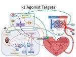 i 1 agonist targets