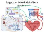 targets for mixed alpha beta blockers