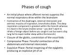 phases of cough