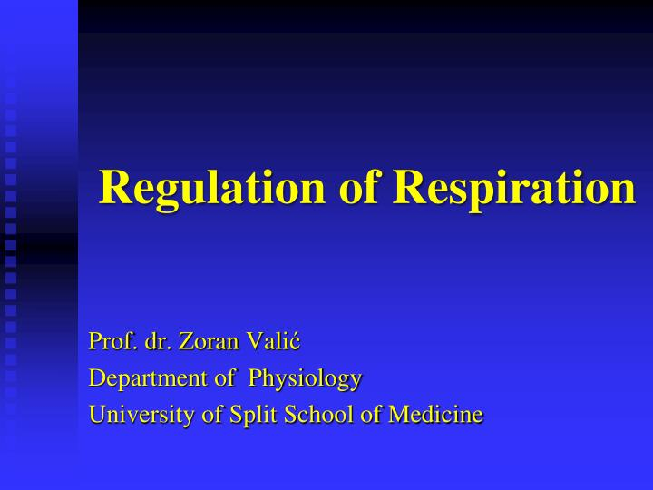 regulation of respiration n.