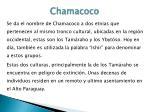 chamacoco1