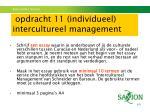 opdracht 11 individueel intercultureel management