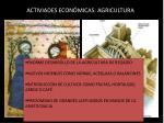 activiades econ micas agricultura