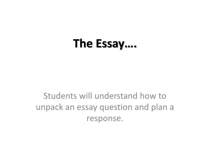 the essay n.