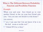 what is the d ifferent b etween p robability f unction and possibility f unction