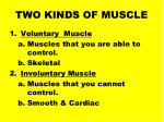 two kinds of muscle