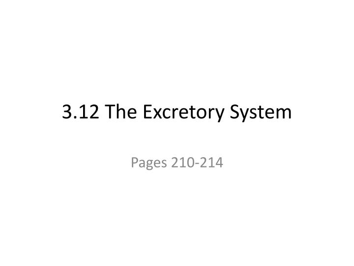 3 12 the excretory system n.