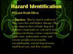 hazard identification2