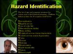 hazard identification4