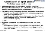 calculation of spot prices technical issue number one