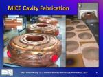 mice cavity fabrication