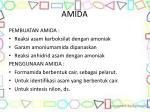 amida1