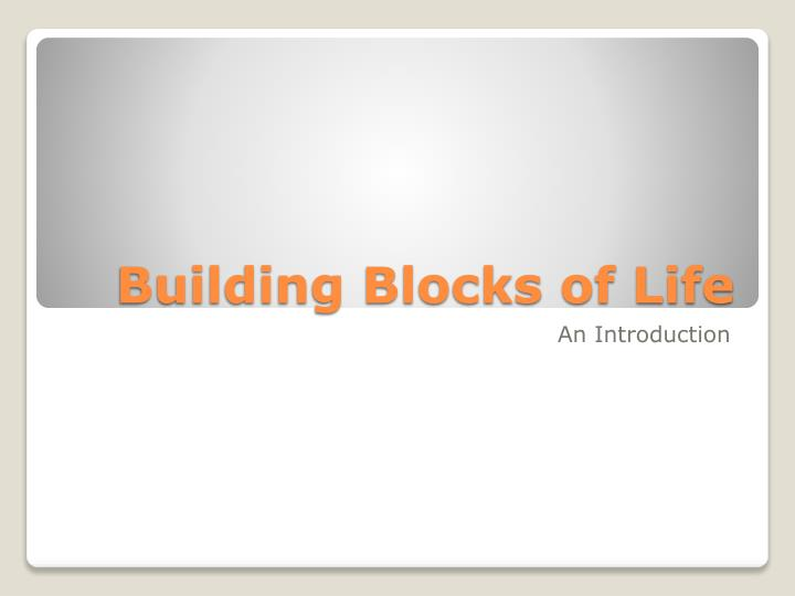 building blocks of life n.