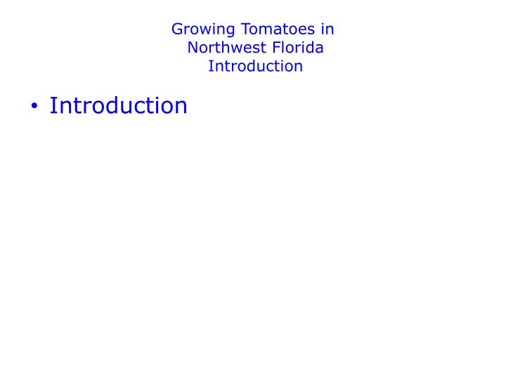 growing tomatoes in northwest florida introduction n.