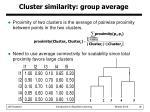 cluster similarity group average