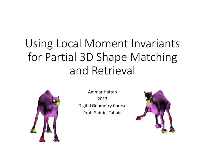 using local moment invariants for partial 3d shape matching and retrieval n.