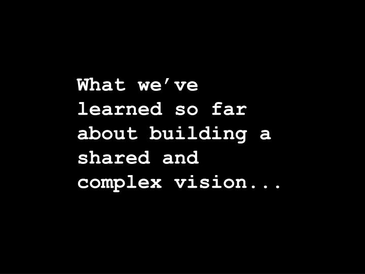 What we've learned so far about building a shared and complex vision...