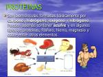 proteinas