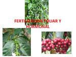 fertilizacion foliar y hormonal