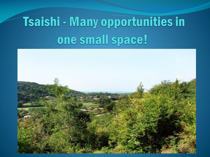 tsaishi many opportunities in one small space n.