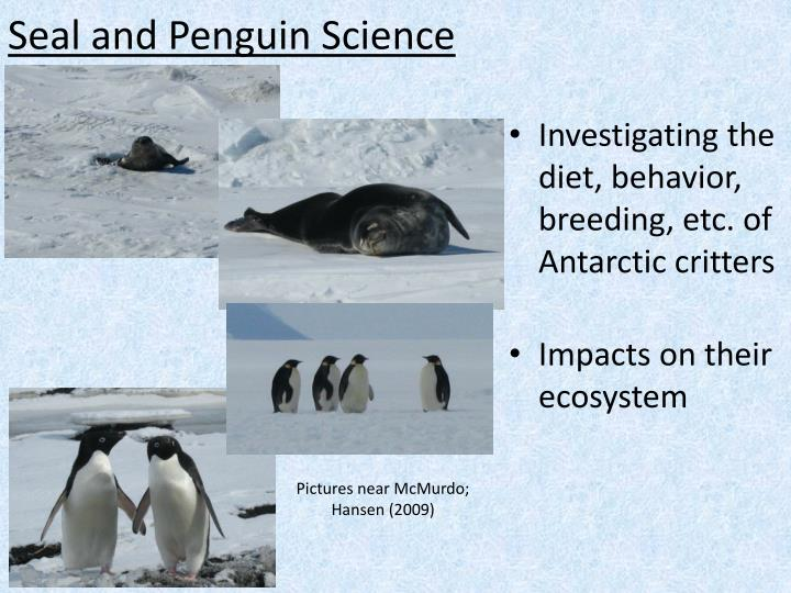 Seal and Penguin Science