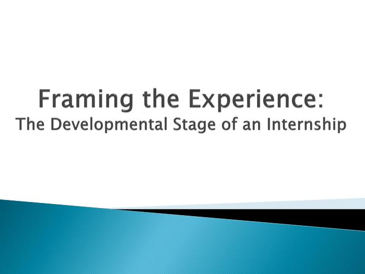 framing the experience the developmental stage of an internship n.