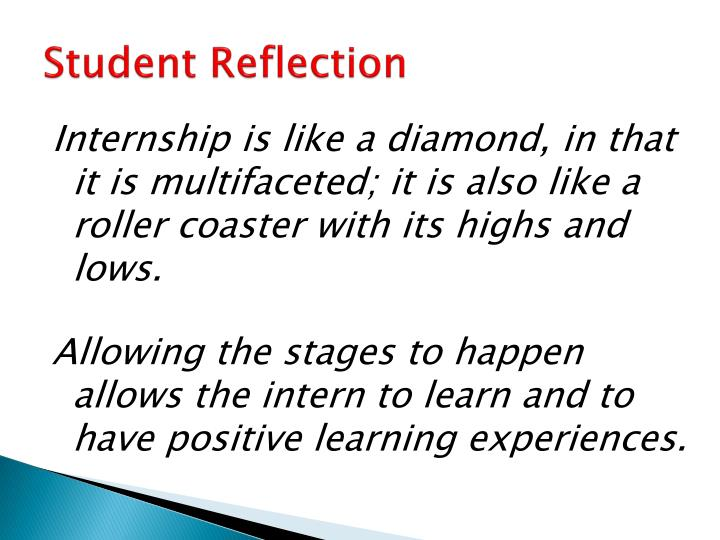the intern reflection