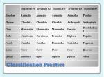 classification practice1