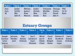 estuary groups