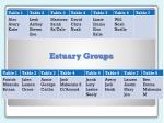 estuary groups1