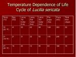 temperature dependence of life cycle of lucilia sericata