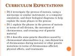 curriculum expectations
