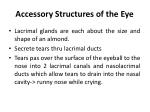 accessory structures of the eye3