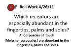 bell work 4 26 11