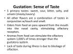 gustation sense of taste
