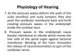 physiology of hearing2