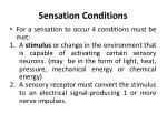 sensation conditions