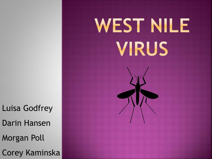 west nile virus n.