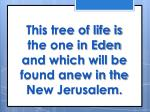 this tree of life is the one in eden and which will be found anew in the new jerusalem