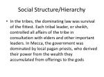 social structure hierarchy1