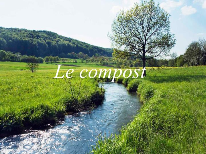 le compost n.