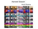 harvest season result showing