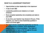 what is a leadership position