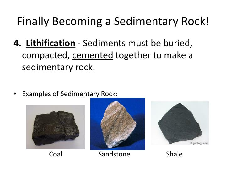 Finally Becoming a Sedimentary Rock!