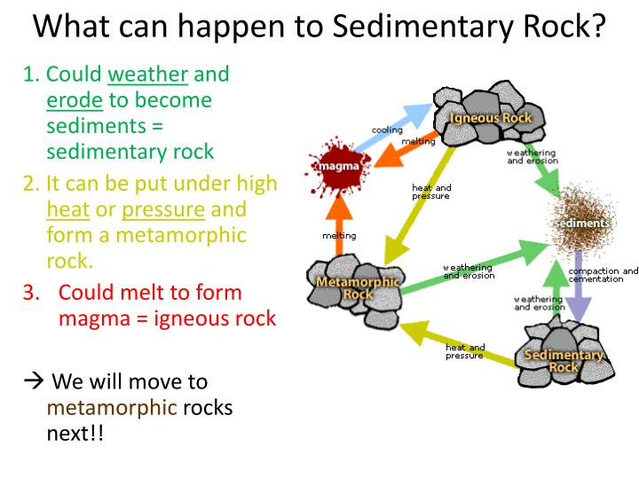 What can happen to Sedimentary Rock?