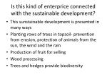 is this kind of enterprice connected with the sustainable development