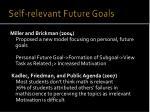 self relevant future goals1