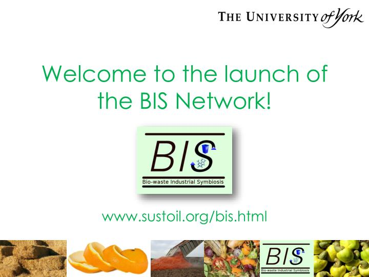 welcome to the launch of the bis network n.